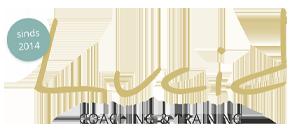 Lucid Consultancy Logo